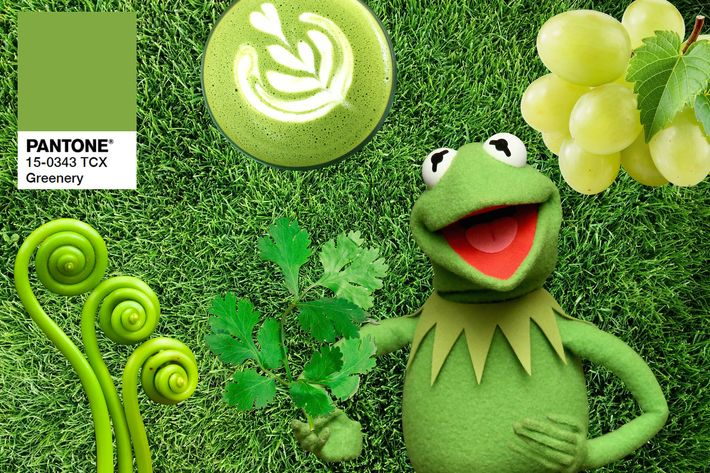 """Color Of The Year greenery"""" is the new pantone color of the year"""