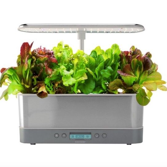AeroGarden Harvest Elite Slim Heirloom Salad