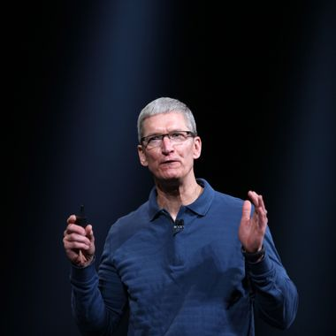 Apple CEO Tim Cook  speaks during Apple's special event at the California Theatre in San Jose on October 23, 2012 in California. Apple unveiled a smaller version of its hot-selling iPad on Tuesday, jumping into the market for smaller tablet computers dominated by Amazon, Google, and Samsung. The iPad mini's touchscreen measures 7.9 inches (20cm) diagonally compared to 9.7 inches(24.6cm) on the original iPad.