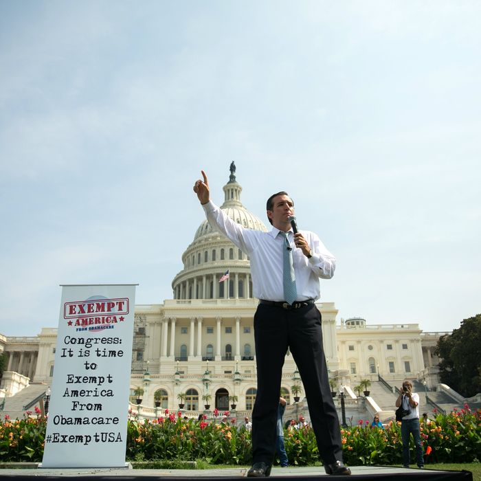 U.S. Sen. Ted Cruz (R-TX) speaks during the