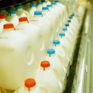 Trump's Immigration Policies Would Probably Cause a Milk Shortage