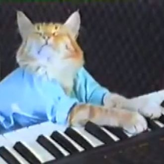 keyboard cat and nyan cat come out ahead in lawsuit against warner bros