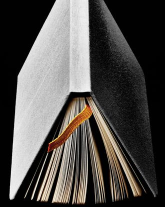 Baron Fig's Confidant notebook.