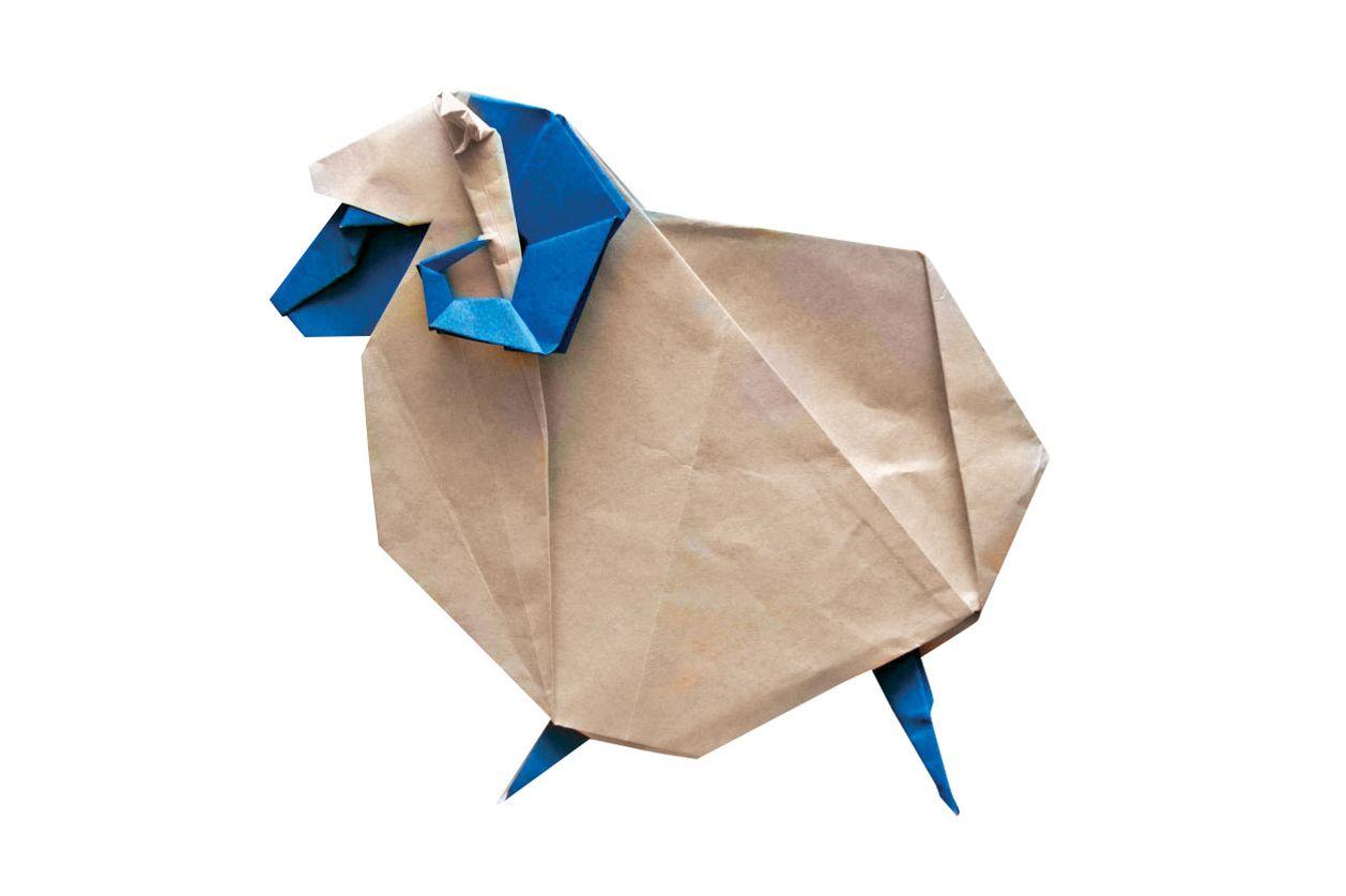 Origami folding class