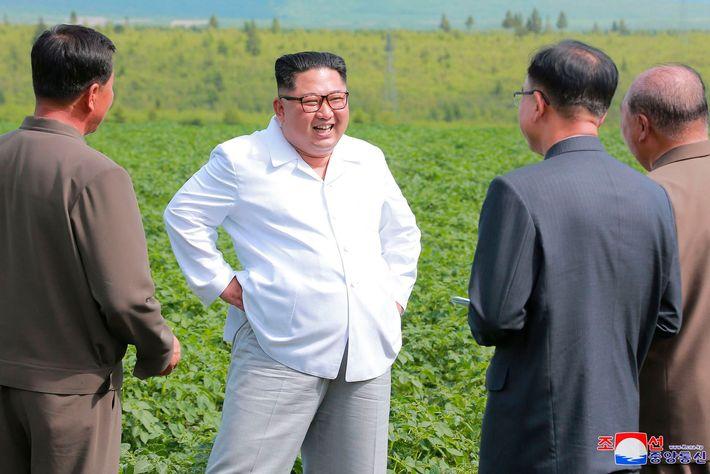 Leader of North Korea in a potato field