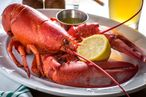 Lobster, straight out of a tank, costs $11 per pound.