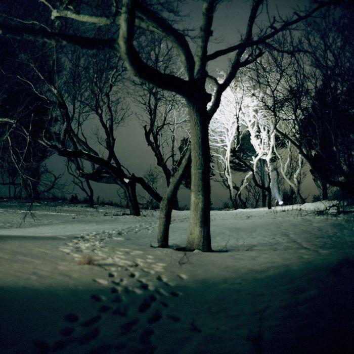 5c8c239ba5 Night Divine: A Short Story by Samantha Hunt