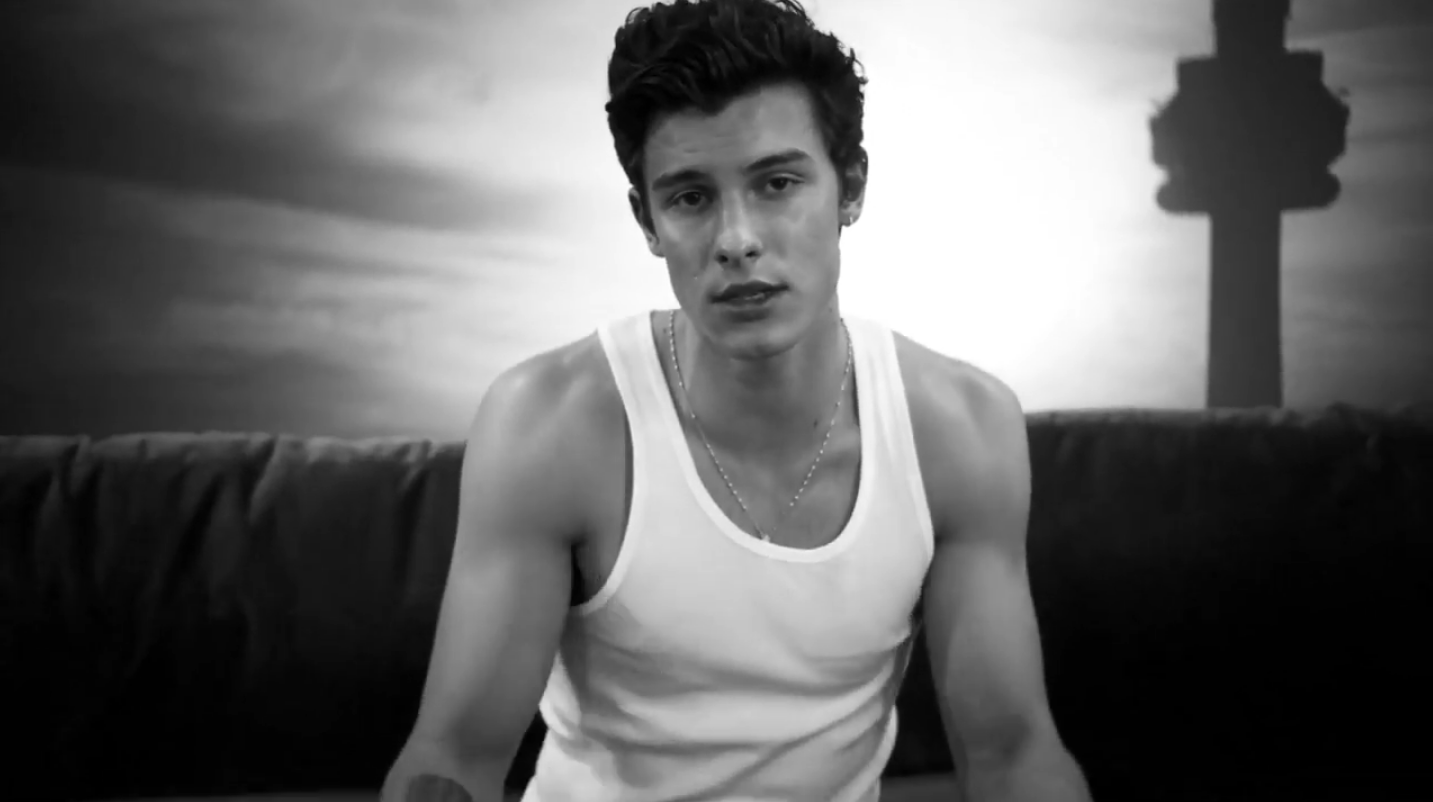 2e07d3aaa Watch the New Shawn Mendes Video Right Now