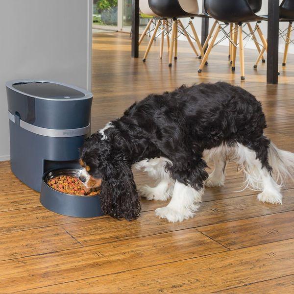 PetSafe Smart Feed Automatic Pet Feeder
