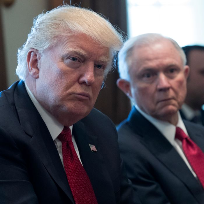 Trump Jeff Sessions Feud The Complete History