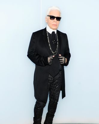 Karl Lagerfeld On His Mother 3 Million Cat And Being A Fashion