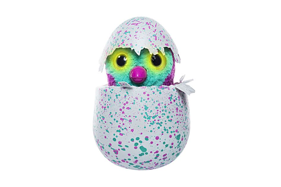 Hatchimals Toys
