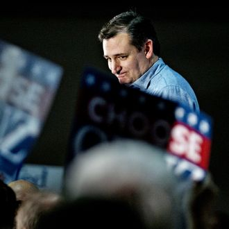 Presidential Candidate Ted Cruz Holds Iowa Campaign Rallies