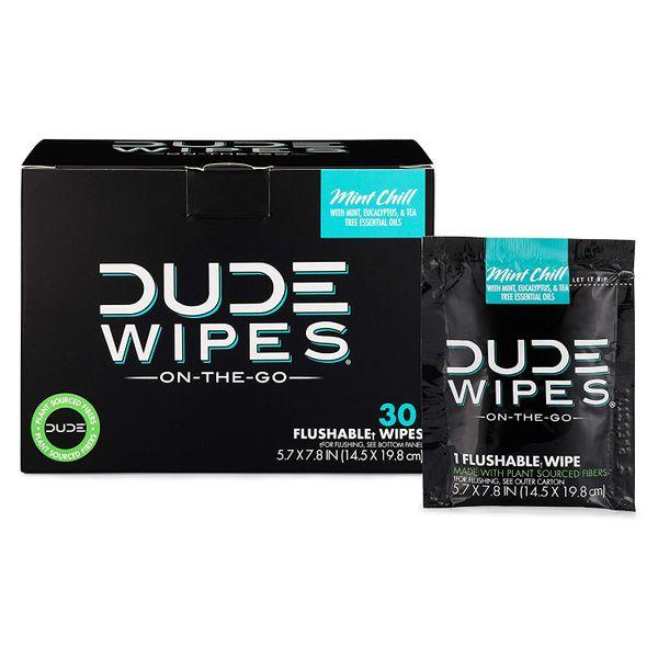Dude Wipes Flushable Travel Wipes