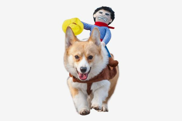 Cowboy Rider Style Dog Carrying Costume