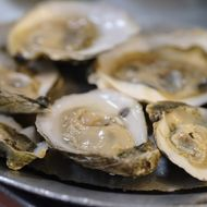 Grim New Study Says Some Pacific Oysters Contain 'a Cocktail of Pharmaceuticals'
