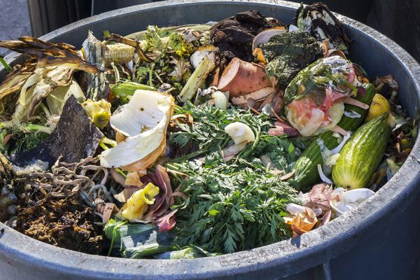 The Average American Household Wastes More Than $600 of Food Each Year