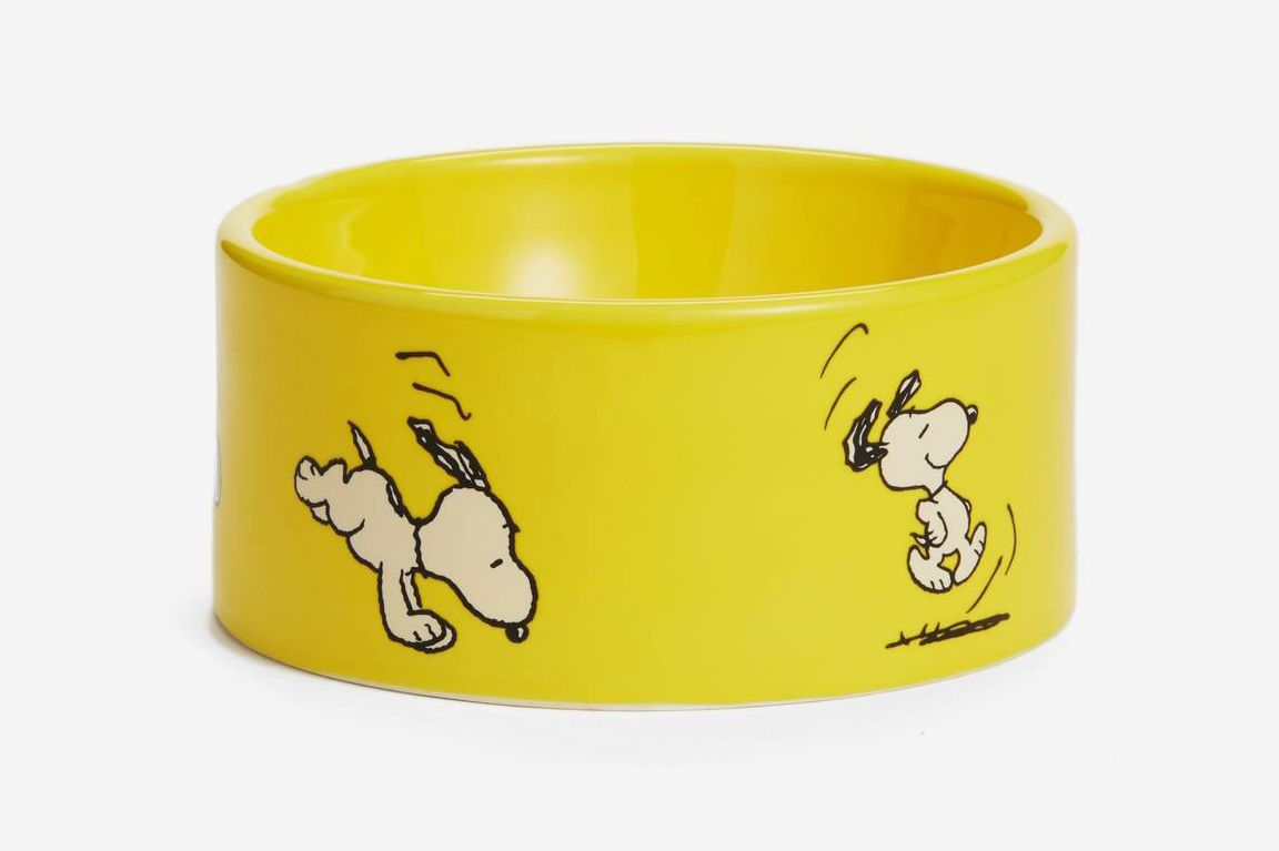 Mr. Dog Snoopy All Purpose Dog Bowl