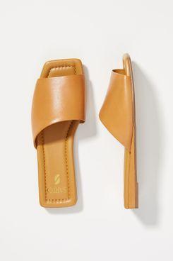 Sarto by Franco Sarto Bordo Sandals