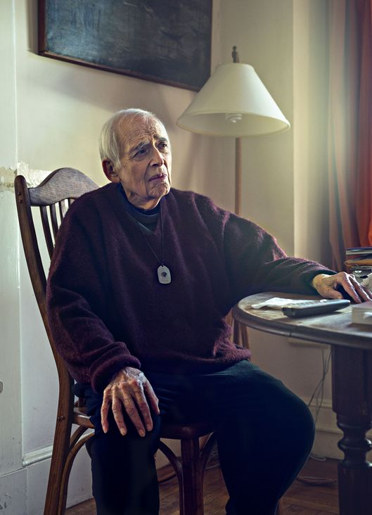 Tea With Harold Bloom, for His 45th Book -- Vulture