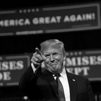 Donald Trump at rally in Tampa, Florida.