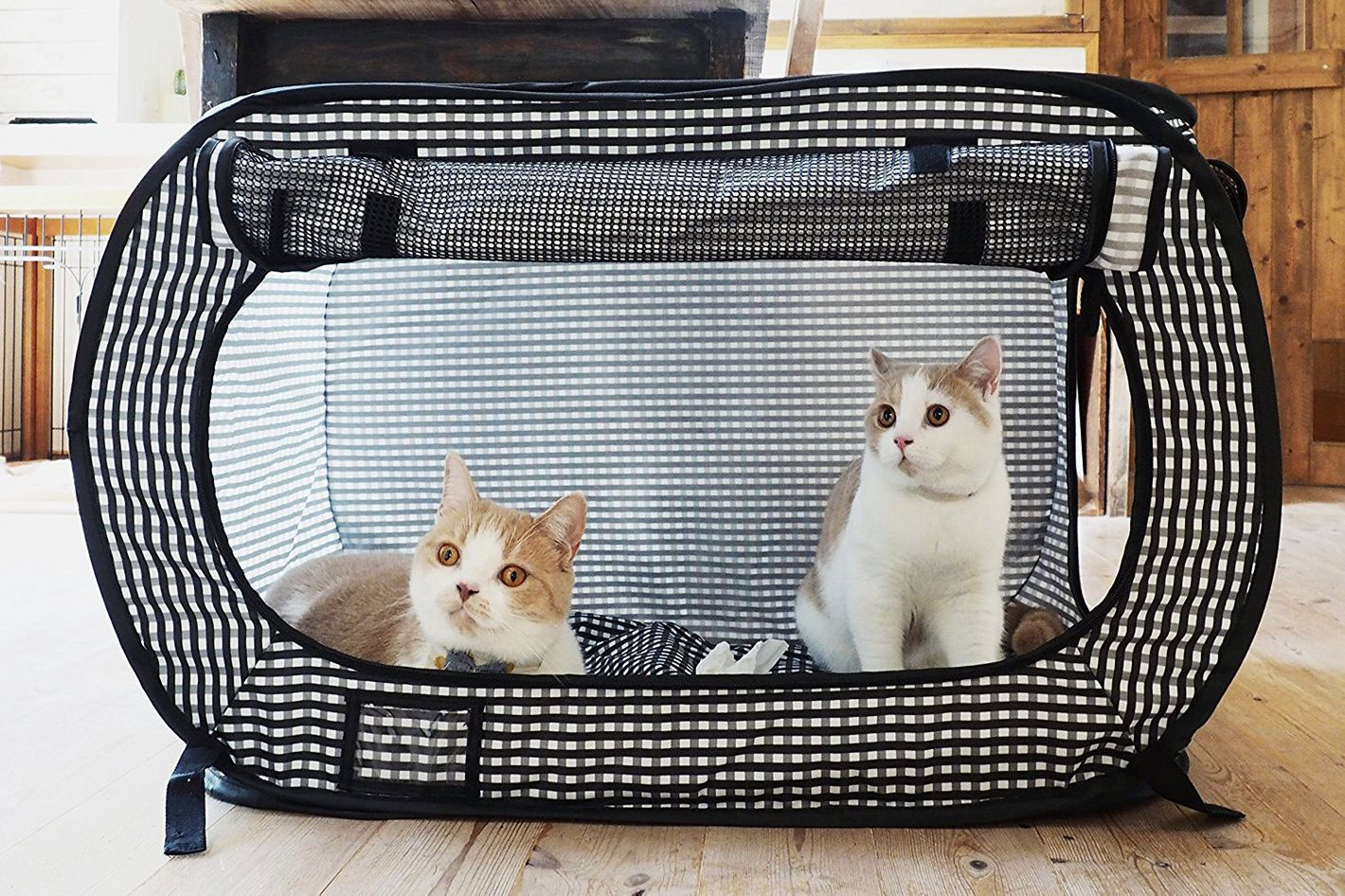 498176179c Necoichi Portable Cat Cage