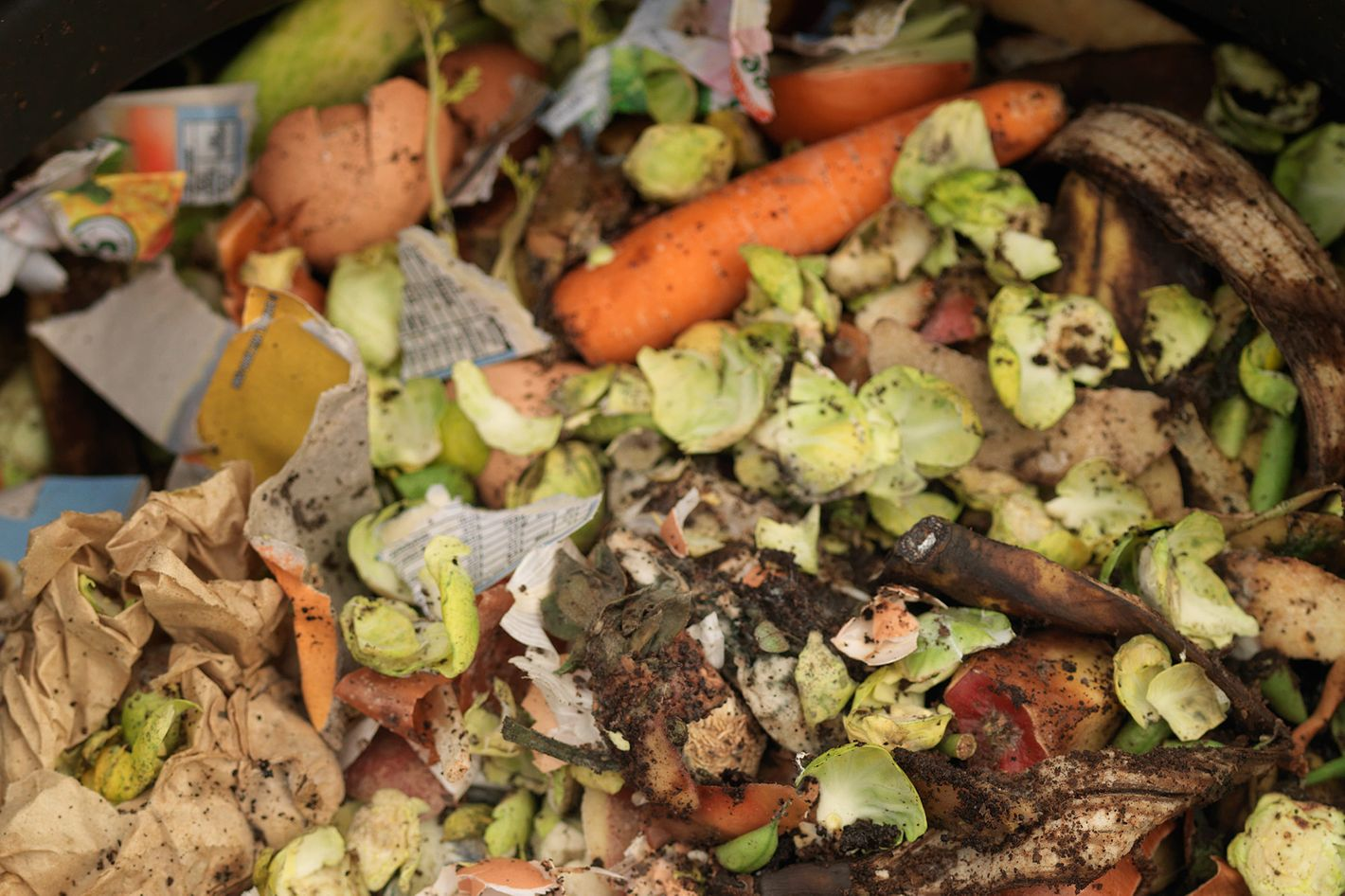 New Jersey\'s Plan to Turn Supermarket Food Waste Into Energy
