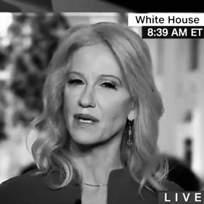Kellyanne Conway on CNN's New Day.
