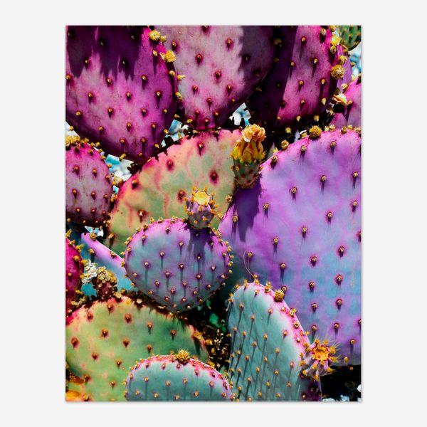 Rainbow Cactus Art Print, by Justina Blakeney