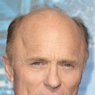 """HOLLYWOOD, CA - JANUARY 23: Actor Ed Harris attends the Premiere of Summit Entertainment's """"Man On A Ledge"""" at Grauman's Chinese Theatre on January 23, 2012 in Hollywood, California.  (Photo by Frederick M. Brown/Getty Images)"""