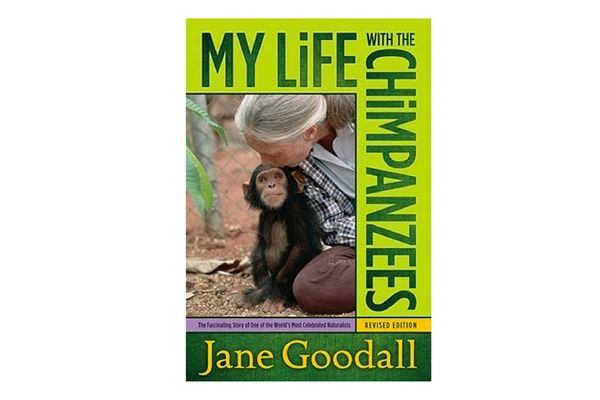 """""""My Life With the Chimpanzees,"""" by Jane Goodall"""