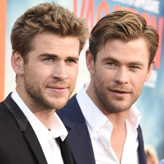 Image Gallery hemsworth brothers