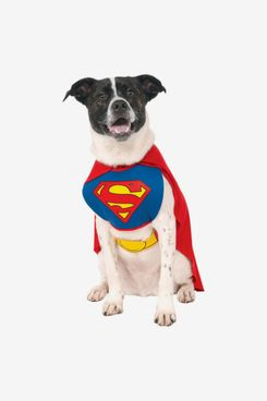Official Superman Dog Costume