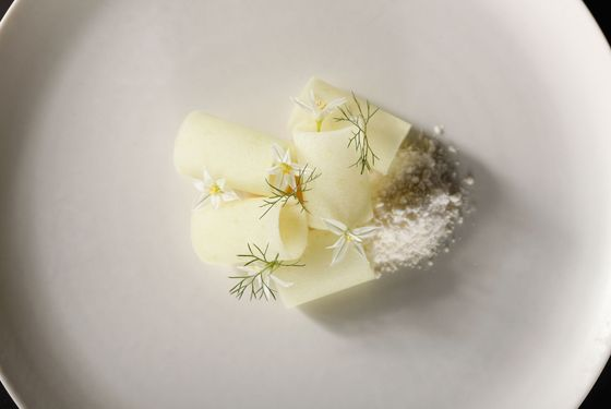 Scallop | Apple, Horseradish