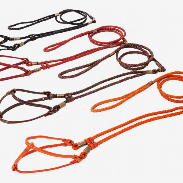 Canine Styles Braided Step-In Harness