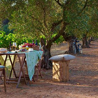 Wine and Dine in 'Game of Thrones' Country
