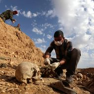 An Iraqi man inspects on February 3, 2015, the remains of members of the Yazidi minority killed by the Islamic State (IS) jihadist group after Kurdish forces discovered a mass grave near the village of Sinuni, in the northwestern Sinjar area. A peshmerga lieutenant colonel said the grave containing the remains of about 25 people was found during a search for explosives that IS often leaves behind, posing a threat to security forces and civilians even after they withdraw. AFP PHOTO / SAFIN HAMED (Photo credit should read SAFIN HAMED/AFP/Getty Images)