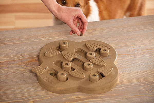 Outward Hound Hide N' Slide Treat Dispensing Dog Toy