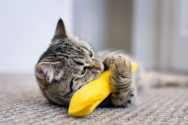 Yeowww! Catnip Toy