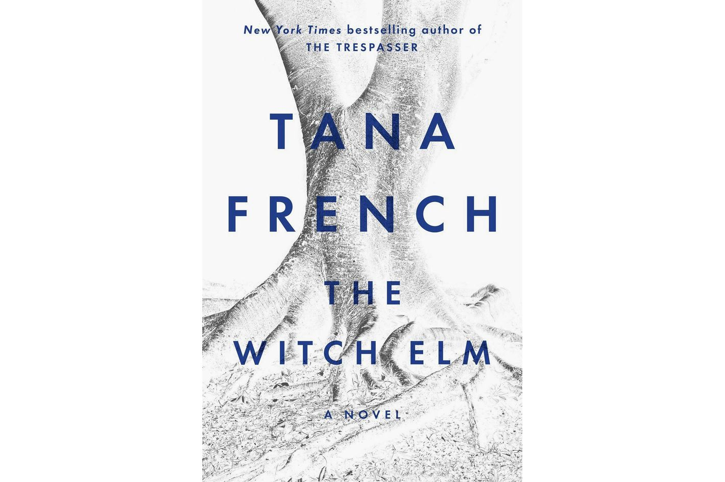 2. <em>The Witch Elm</em>, by Tana French (Viking)