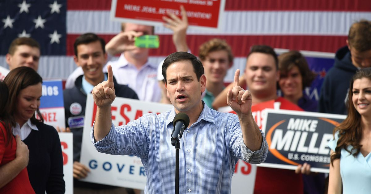 Rubio: Democrats Are Trying to Steal Florida Elections by Counting All the Votes