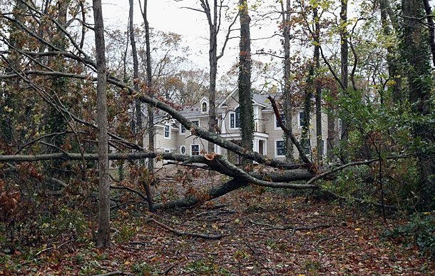 "LAUREL HOLLOW, NY - OCTOBER 30: A driveway to a house on White Oak Tree Road is blocked by downed trees in the aftermath of Hurricane Sandy on October 30, 2012 in Laurel Hollow, New York. The storm has claimed at least a few dozen lives in the United States, and has caused massive flooding across much of the Atlantic seaboard. U.S. President Barack Obama has declared the situation a ""major disaster"" for large areas of the U.S. east coast, including New York City.  (Photo by Bruce Bennett/Getty Images)"