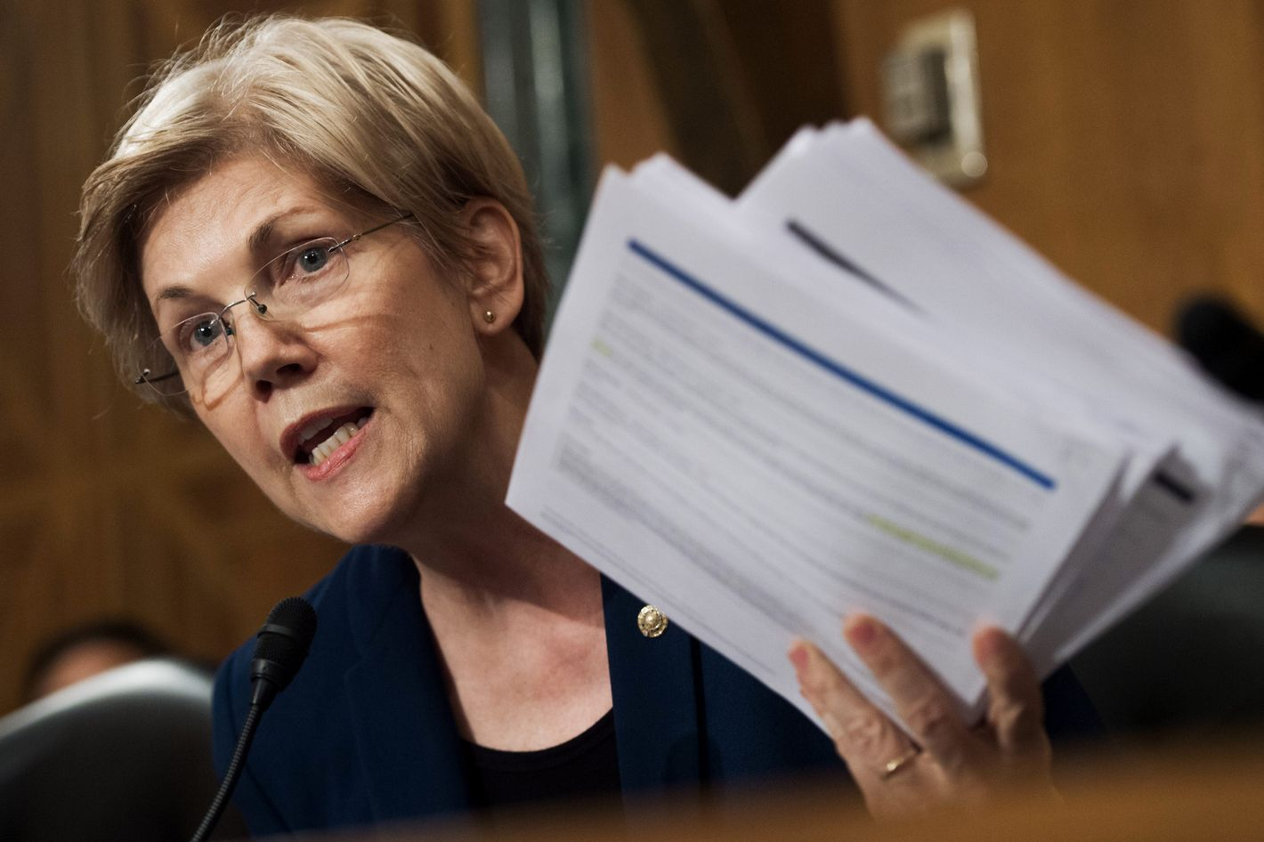 Old Fashioned Elizabeth Warren Resume Pictures Examples