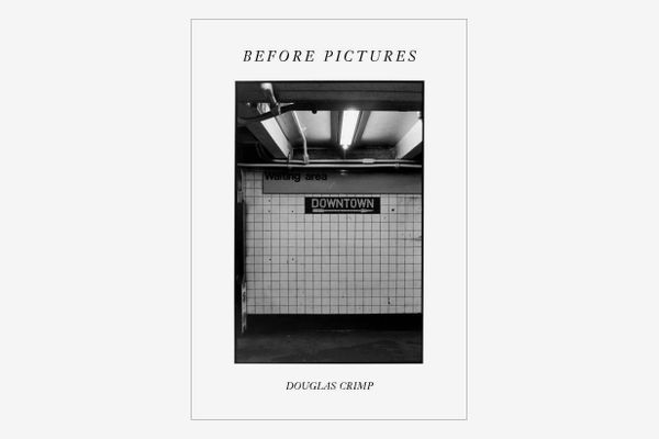Before Pictures by Douglas Crimp