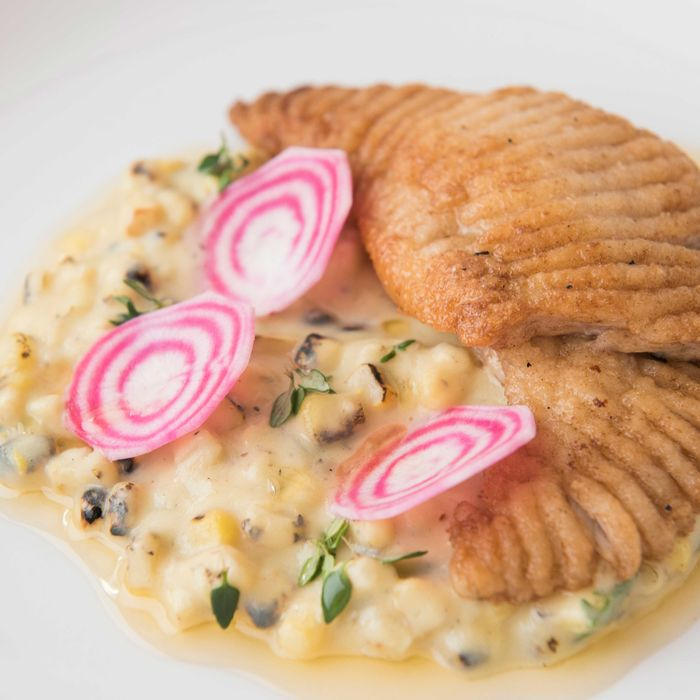 Skate with corn chowder and pickled candy-cane beets.