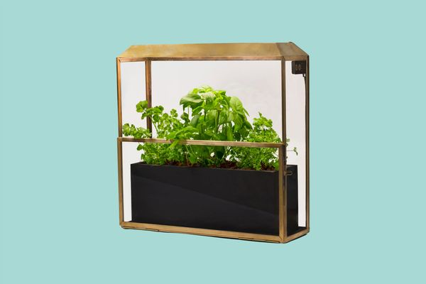 Modern Sprout Growhouse Greenhouse & Growlight