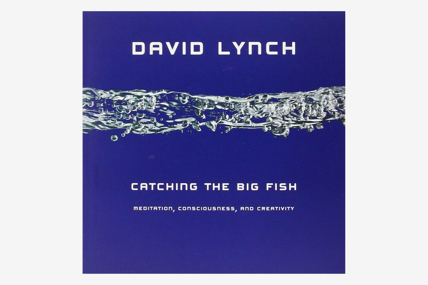 Catching the Big Fish: Meditation, Consciousness, and Creativity, by David Lynch