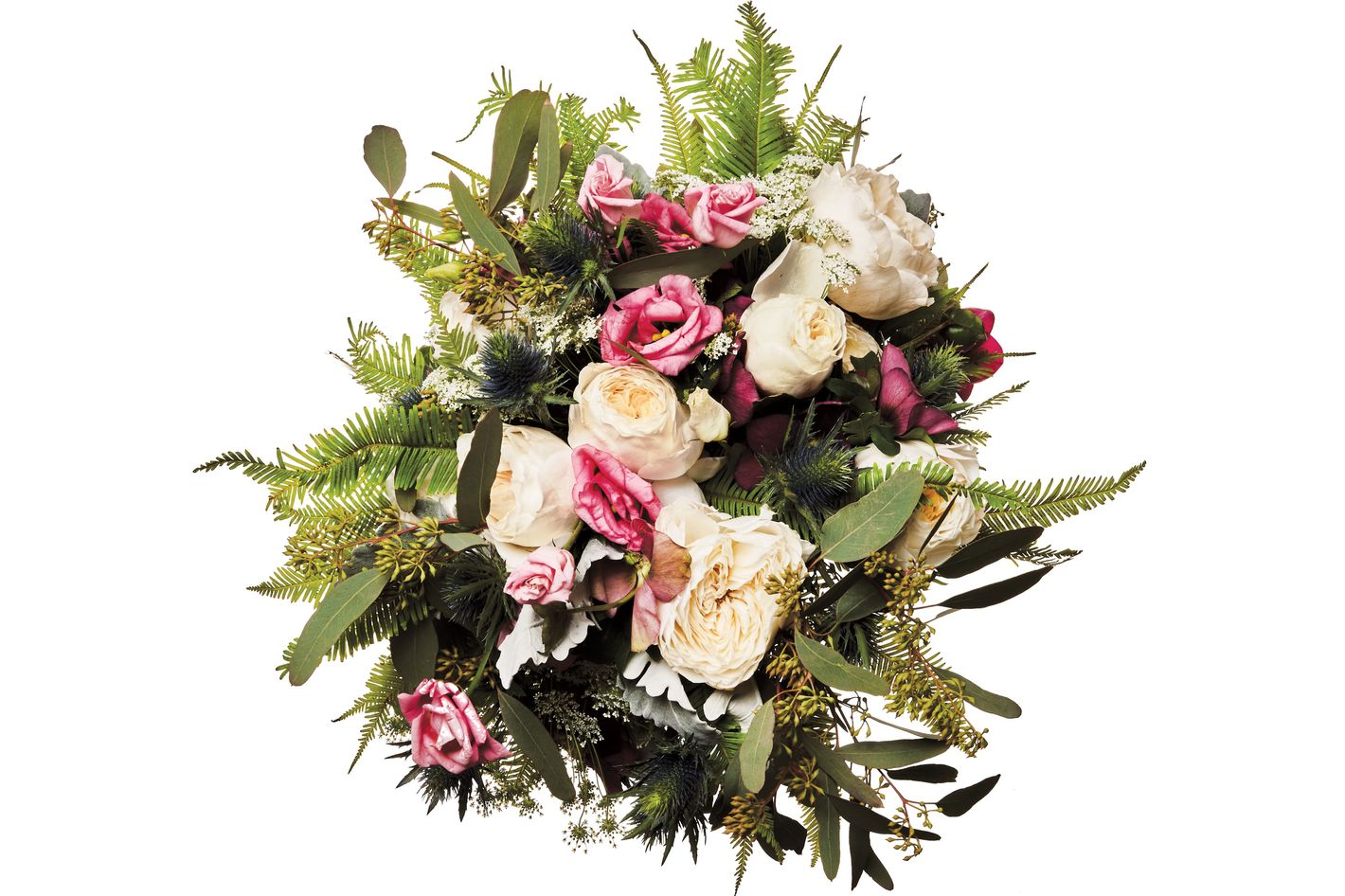 Blue thistle, hellebore, Queen Anne's lace, umbrella fern, dusty miller, lisianthus, garden rose, and seeded eucalyptus