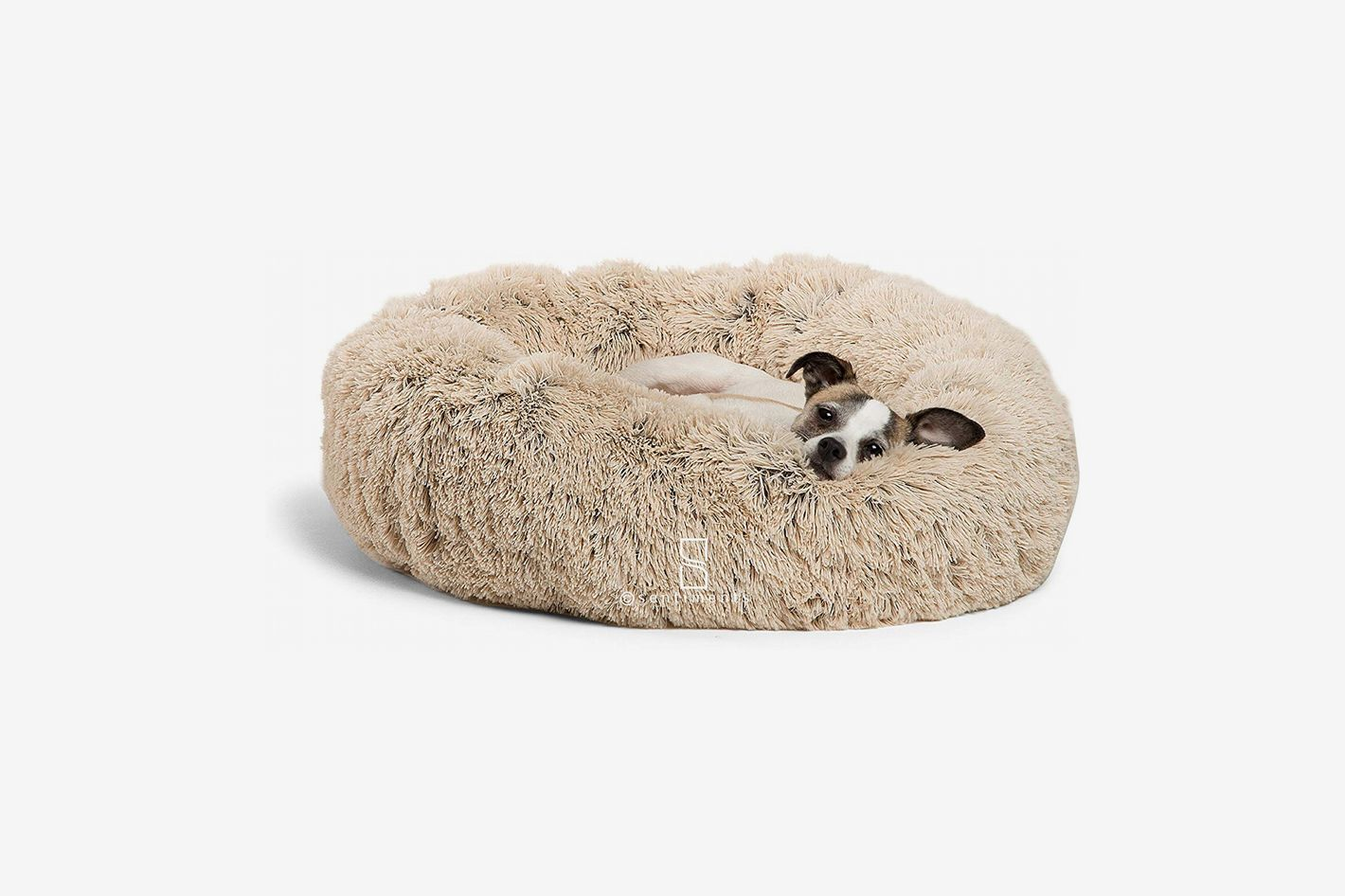 9 Best Dog Beds 2019