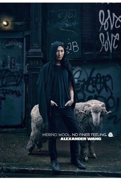 Alexander Wang and sheep.